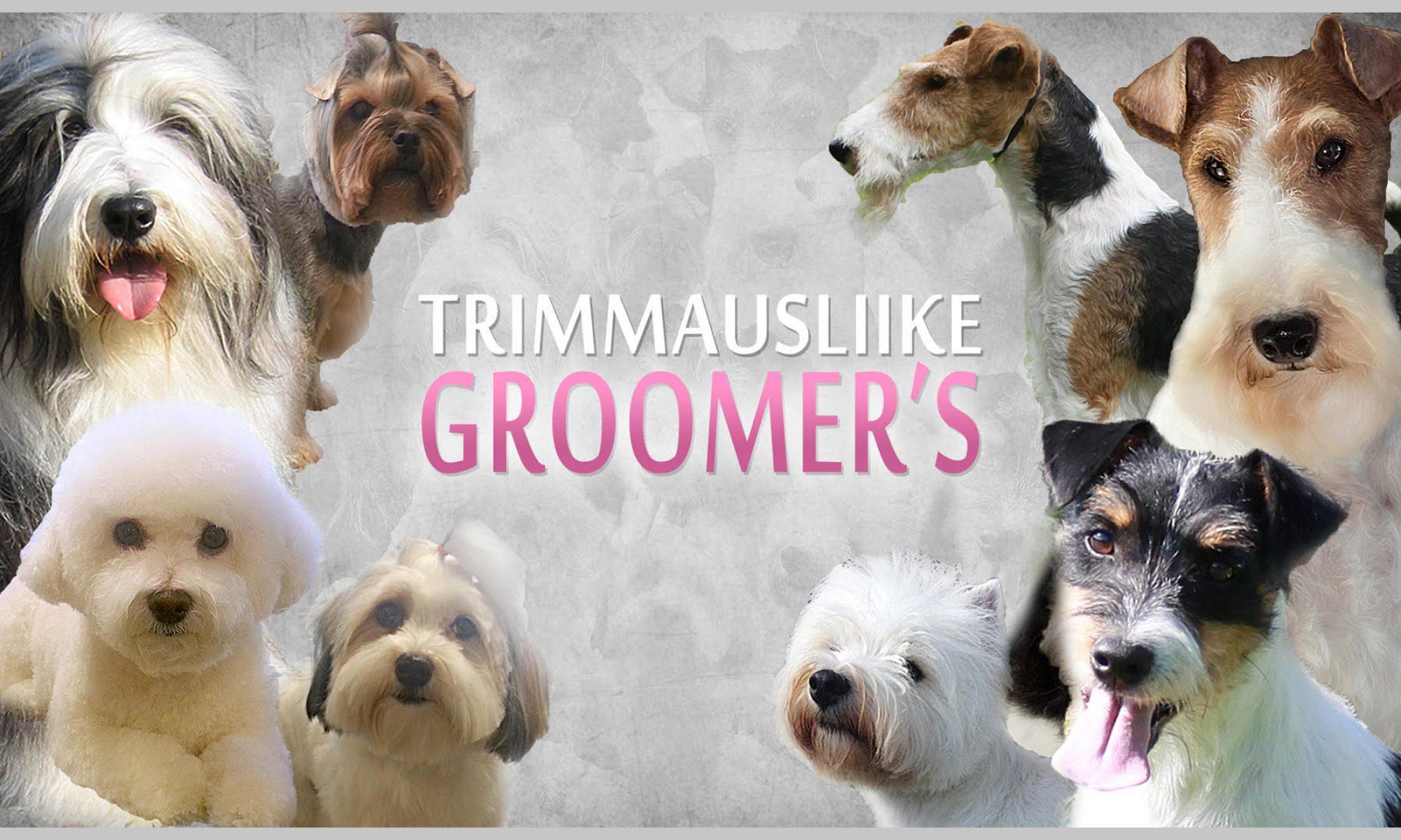 Trimmausliike Groomer's